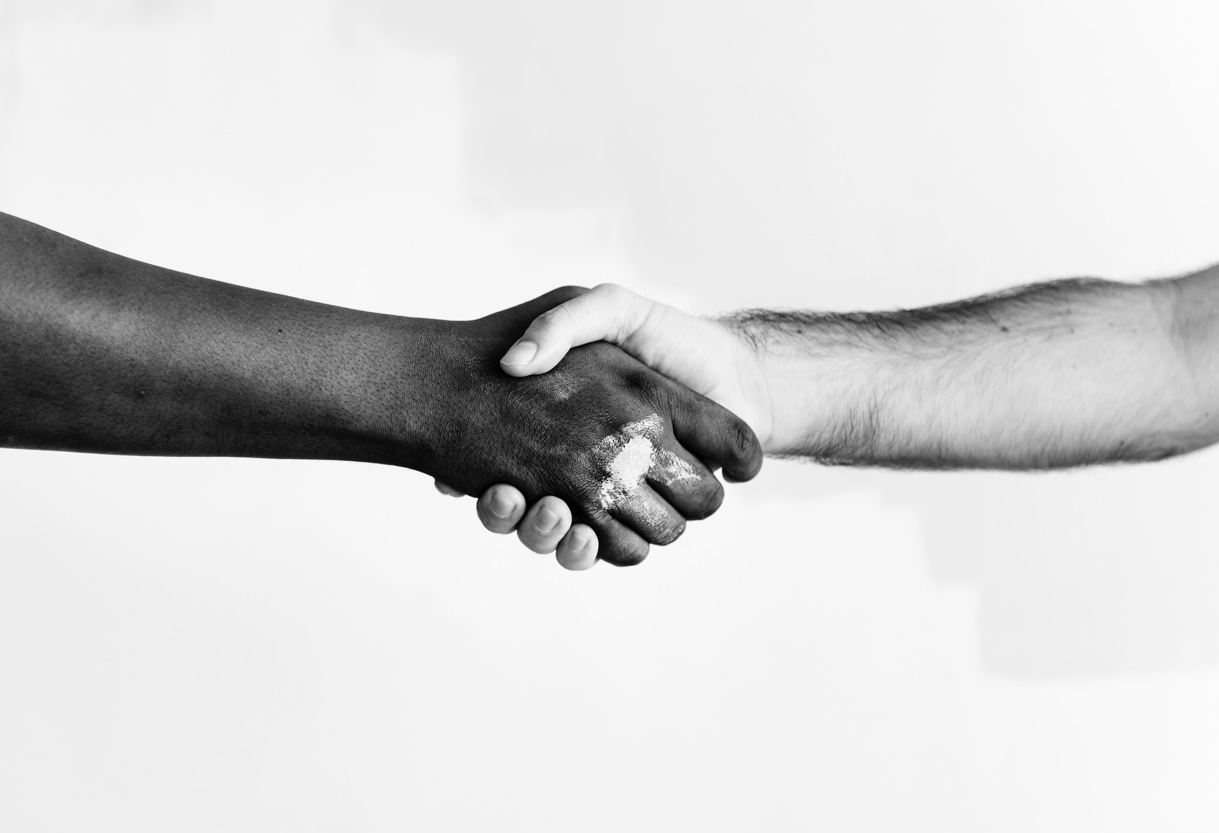 black-and-white-color-cooperation-1389098.jpg