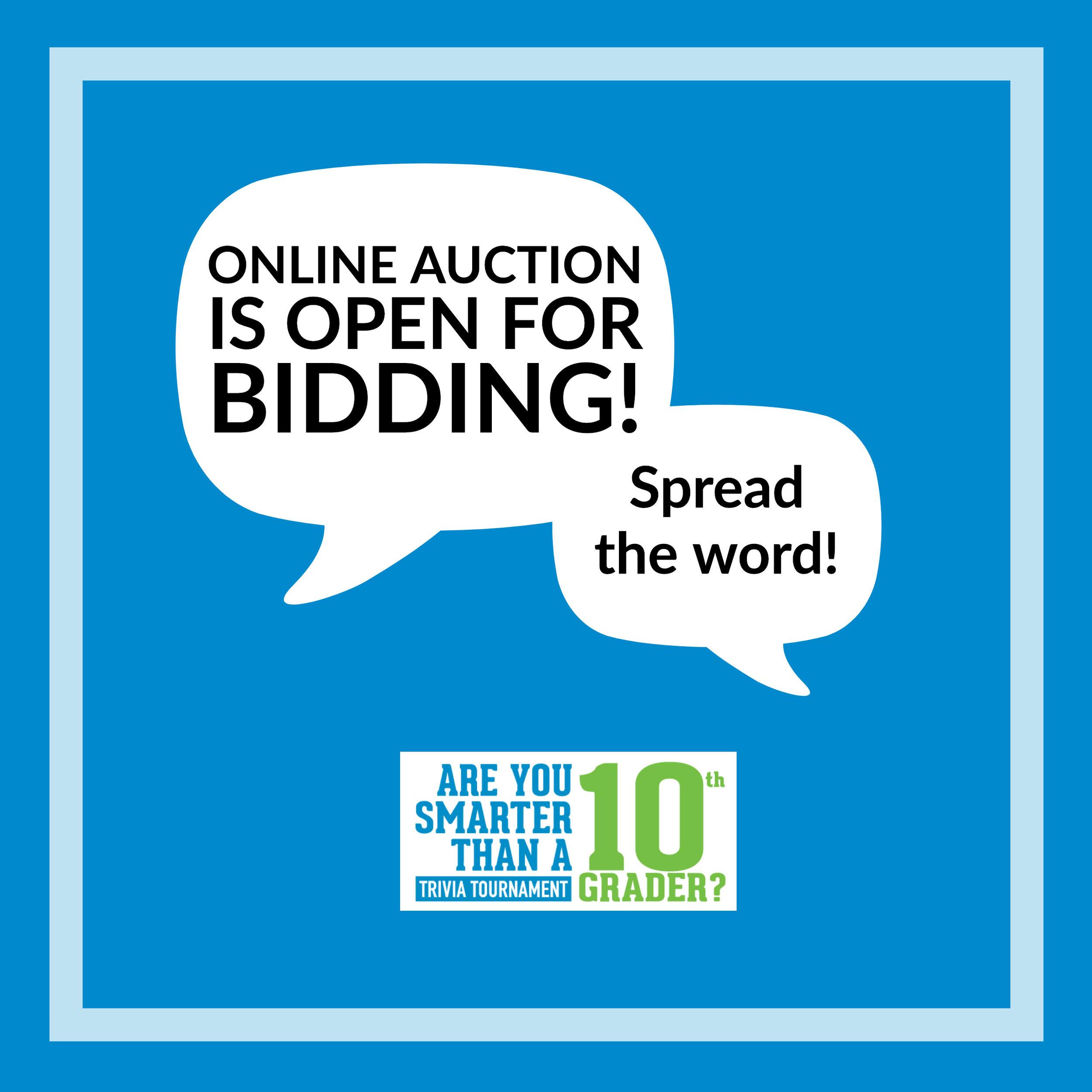 AYS_auctionopen.jpg