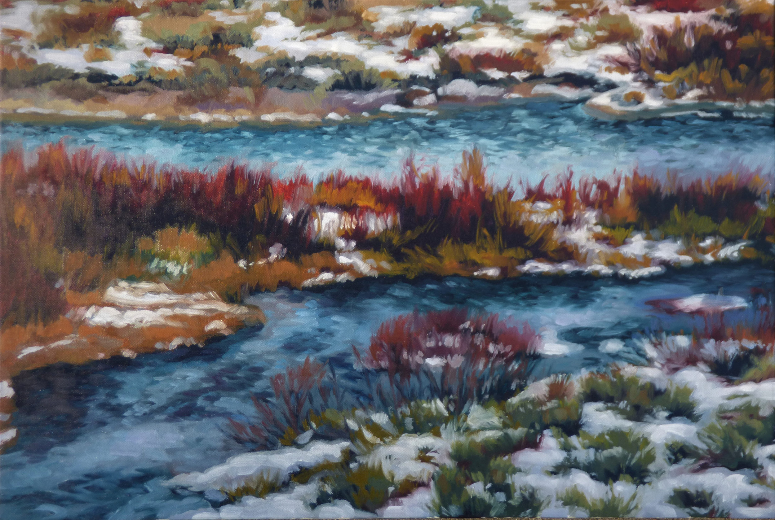 Sawtooth Valley, Salmon River