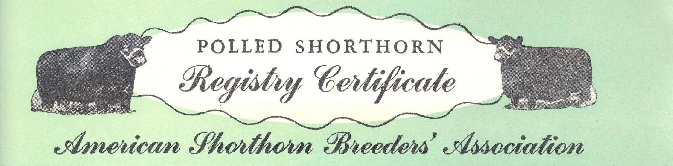 Polled Shorthorn Registration Certificate (top).jpg