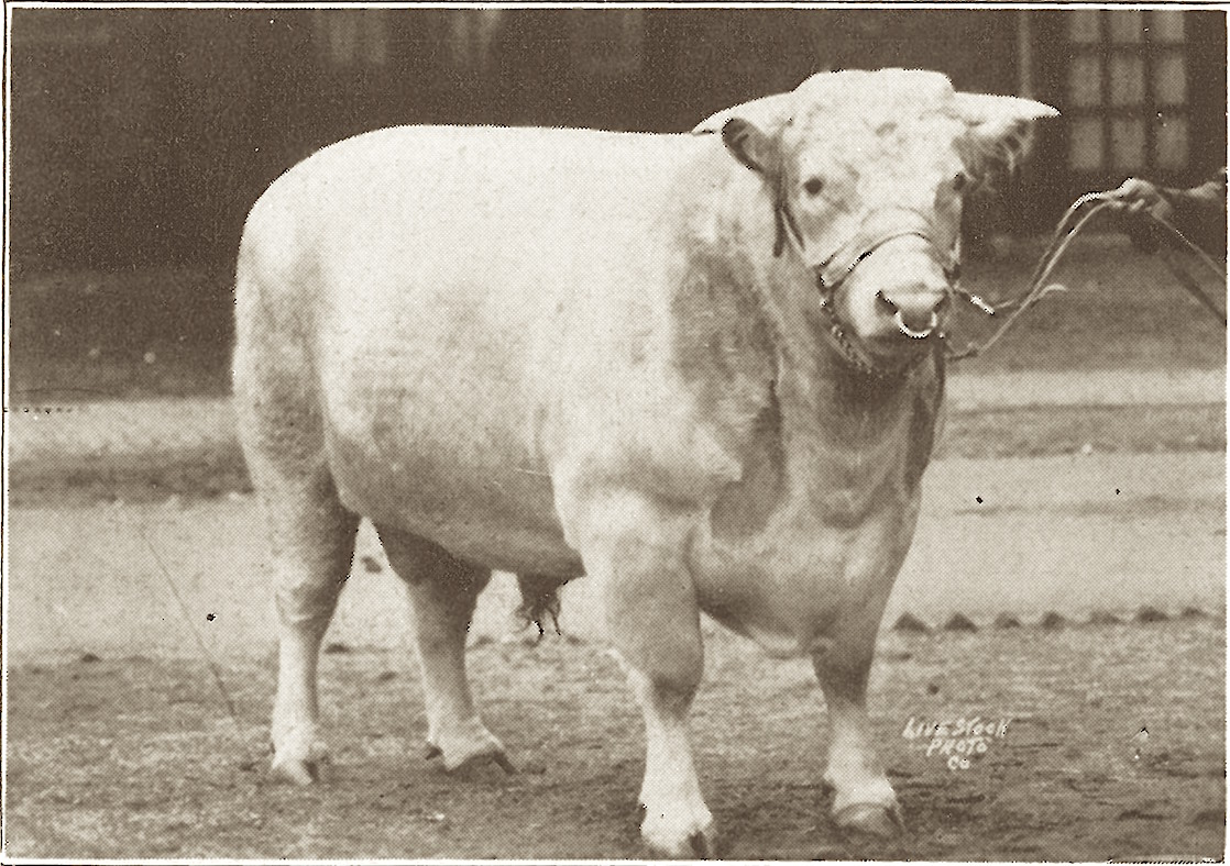 1926 Oakdale Stanmore 1193382.JPG