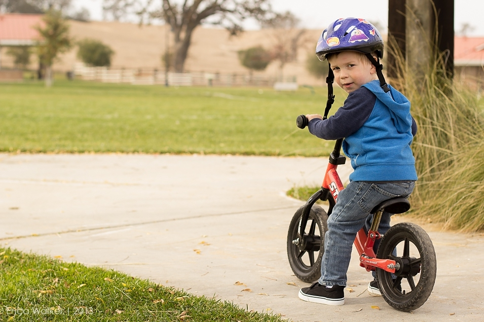 3 year old biking - Erica Faith Photography