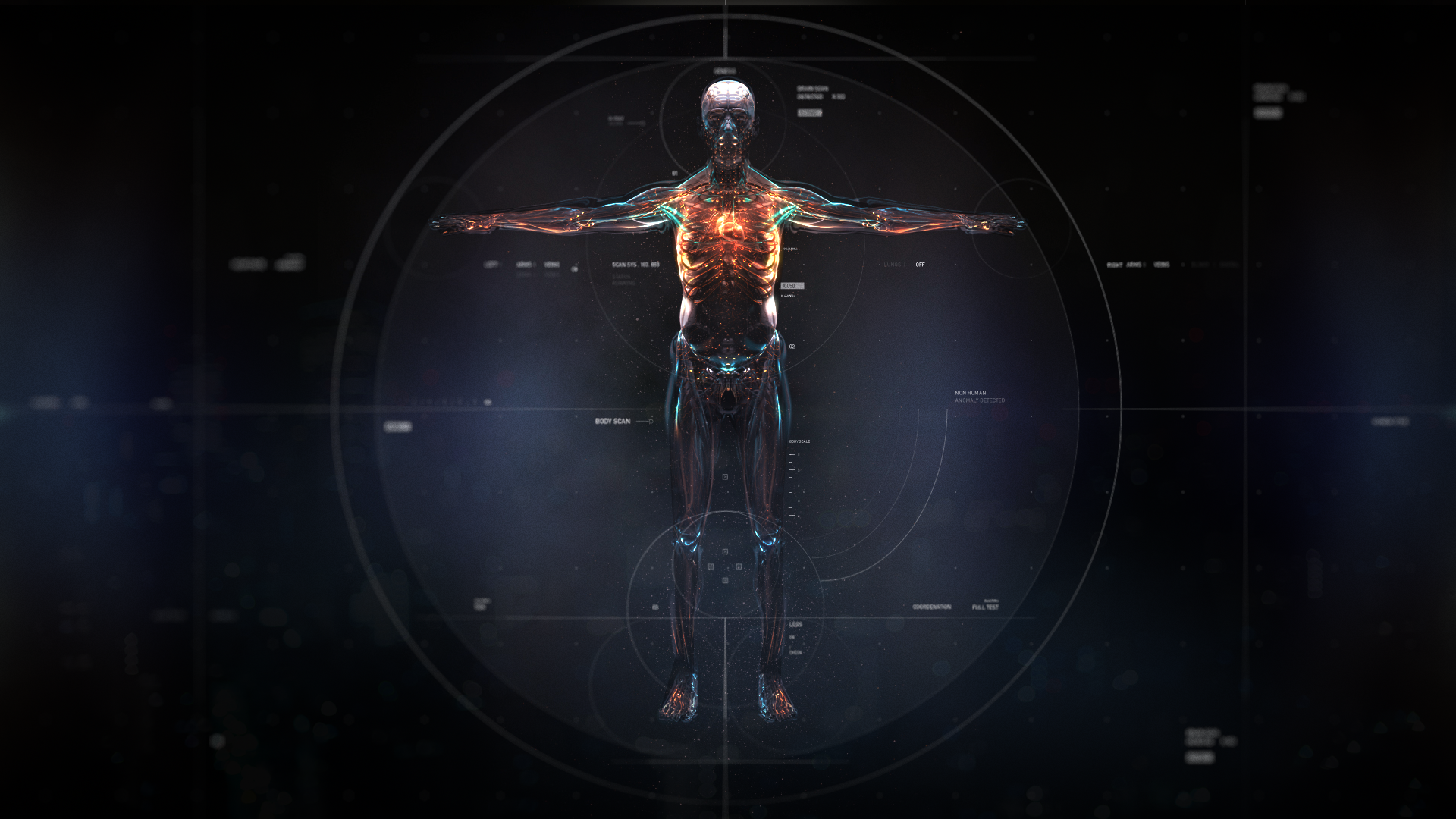 BODY_SCAN_07.png