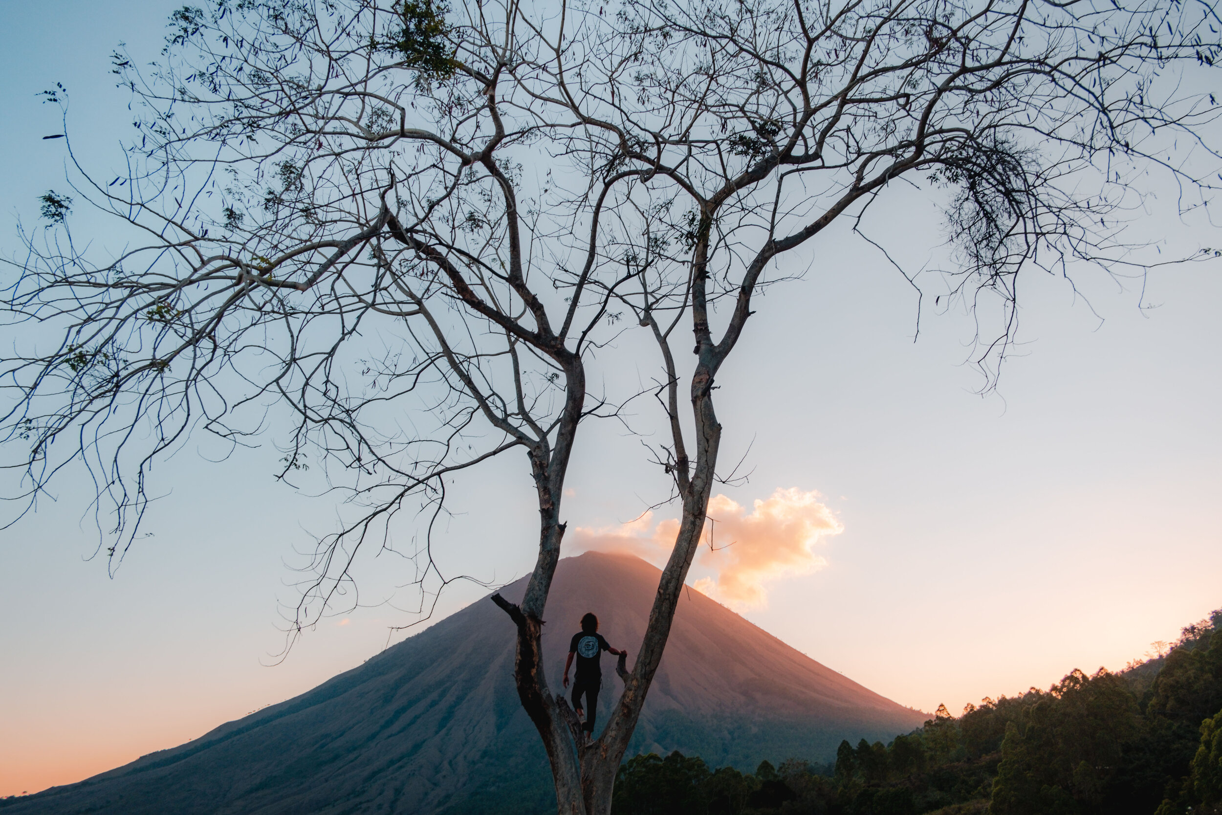 Jesse Echevarria - Indonesia - Bajawa big.jpg