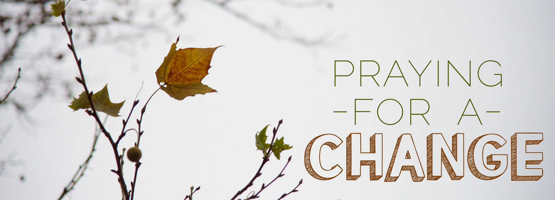 Praying-for-Change-Leaf-1920x692.jpg