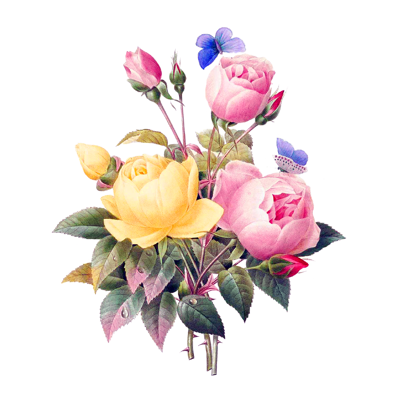 flowers-2919730_1280.png