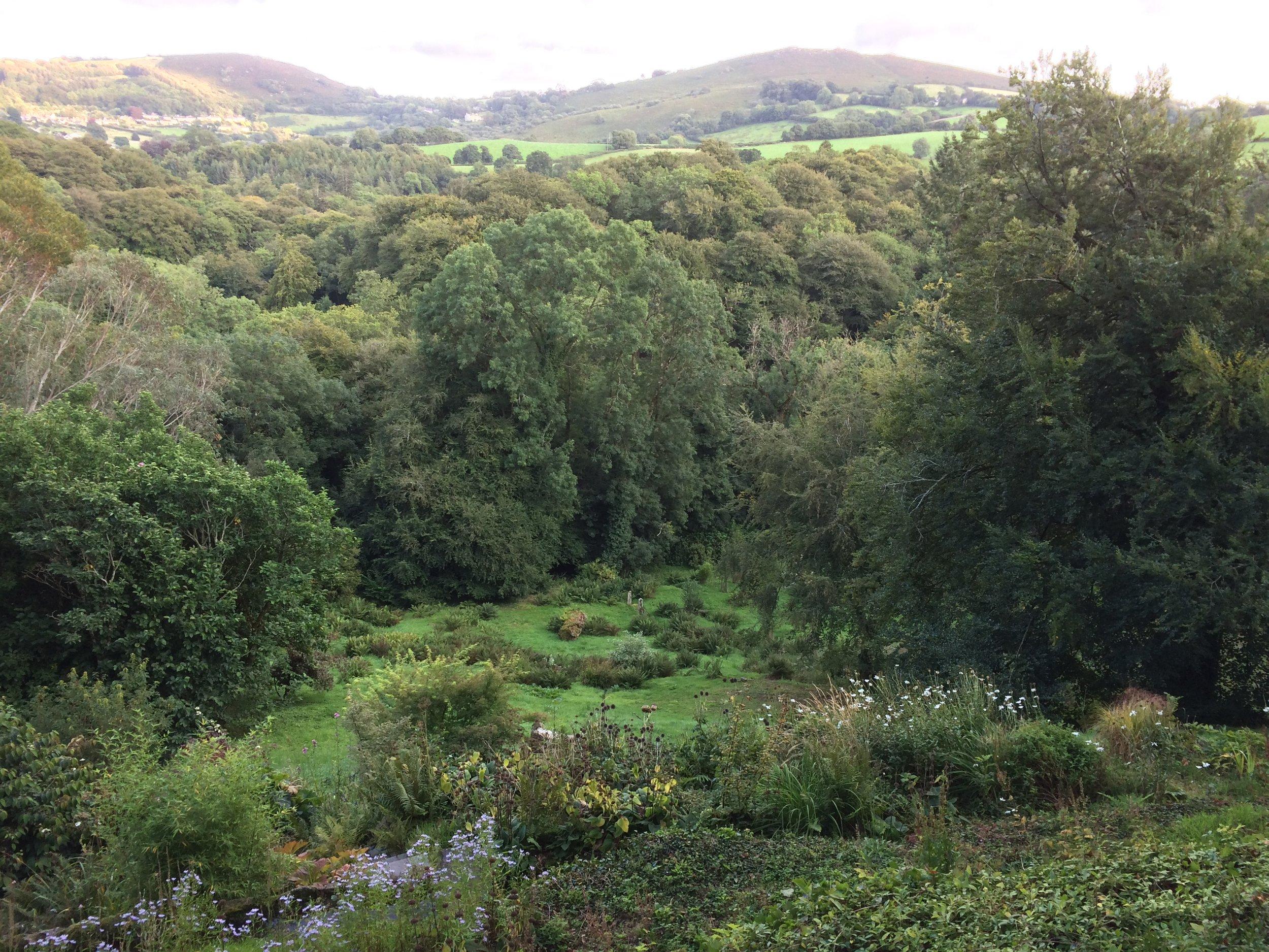 St Olaves hillside early September 2017
