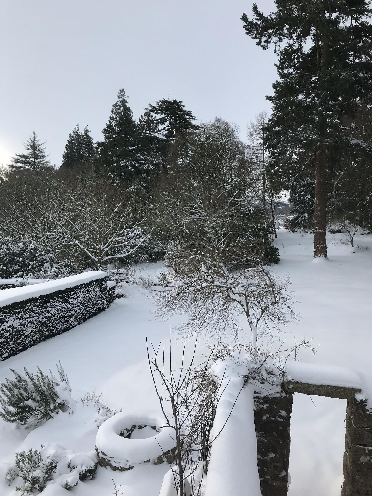 Thick snow - well etc.jpg