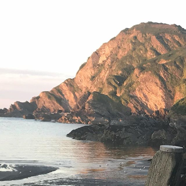 Beautiful evening light in Ilfracombe yesterday evening