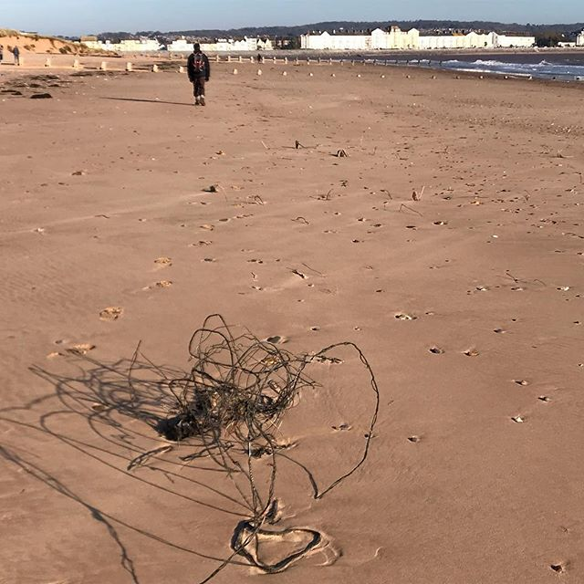 Beautiful morning for a walk on Dawlish Warren - wire 'sculpture' casting interesting shadows on the sand, but why do we pollute and litter?