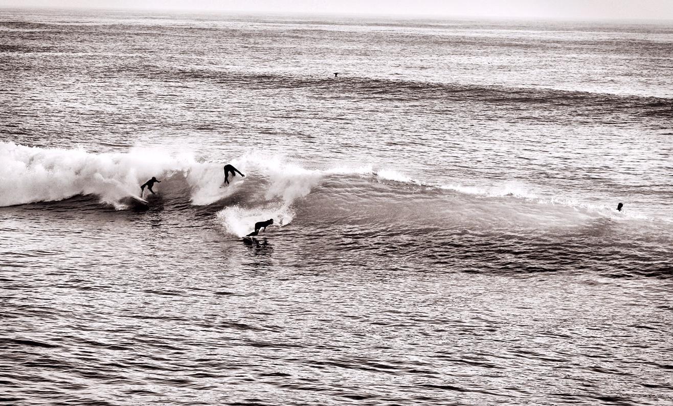 surfers bw
