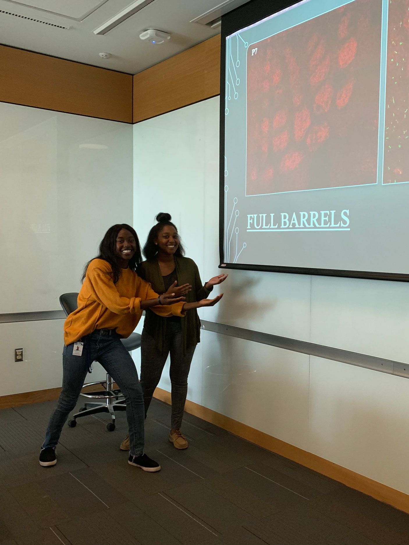 Interns present their data to the lab! - 2019 summer undergraduate interns Tete Brenda Thomas and Meggan Mwangi spent 8-10 weeks in the Schafer laboratory working on microglia-related projects and presented their findings on July 25th.