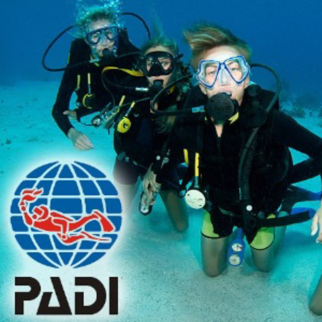 padi-open-water-dive-course.jpg