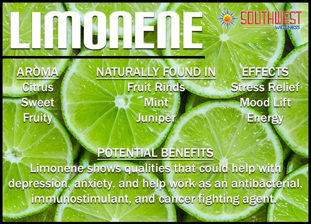 Limonene Terp Profile.png