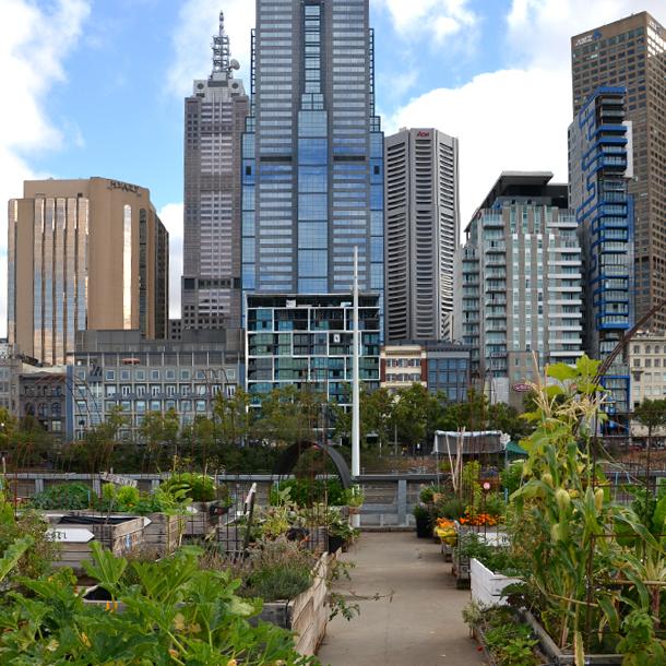 urban-greening-sustainability.jpg