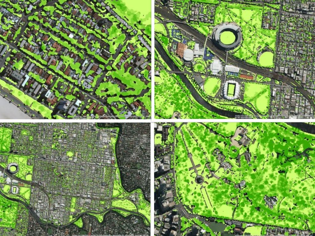 GIS Urban Forest.jpg