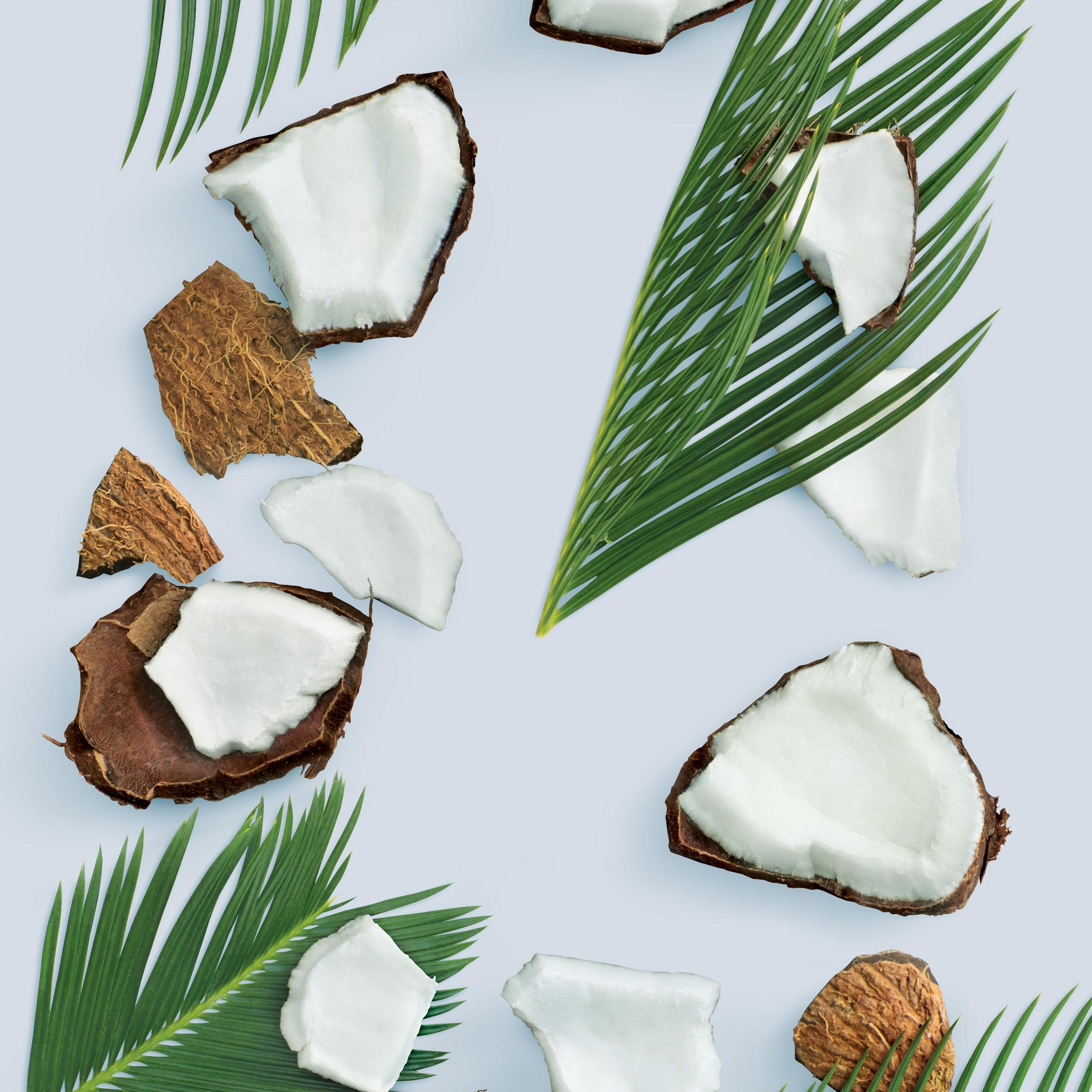coconut ingred.jpg