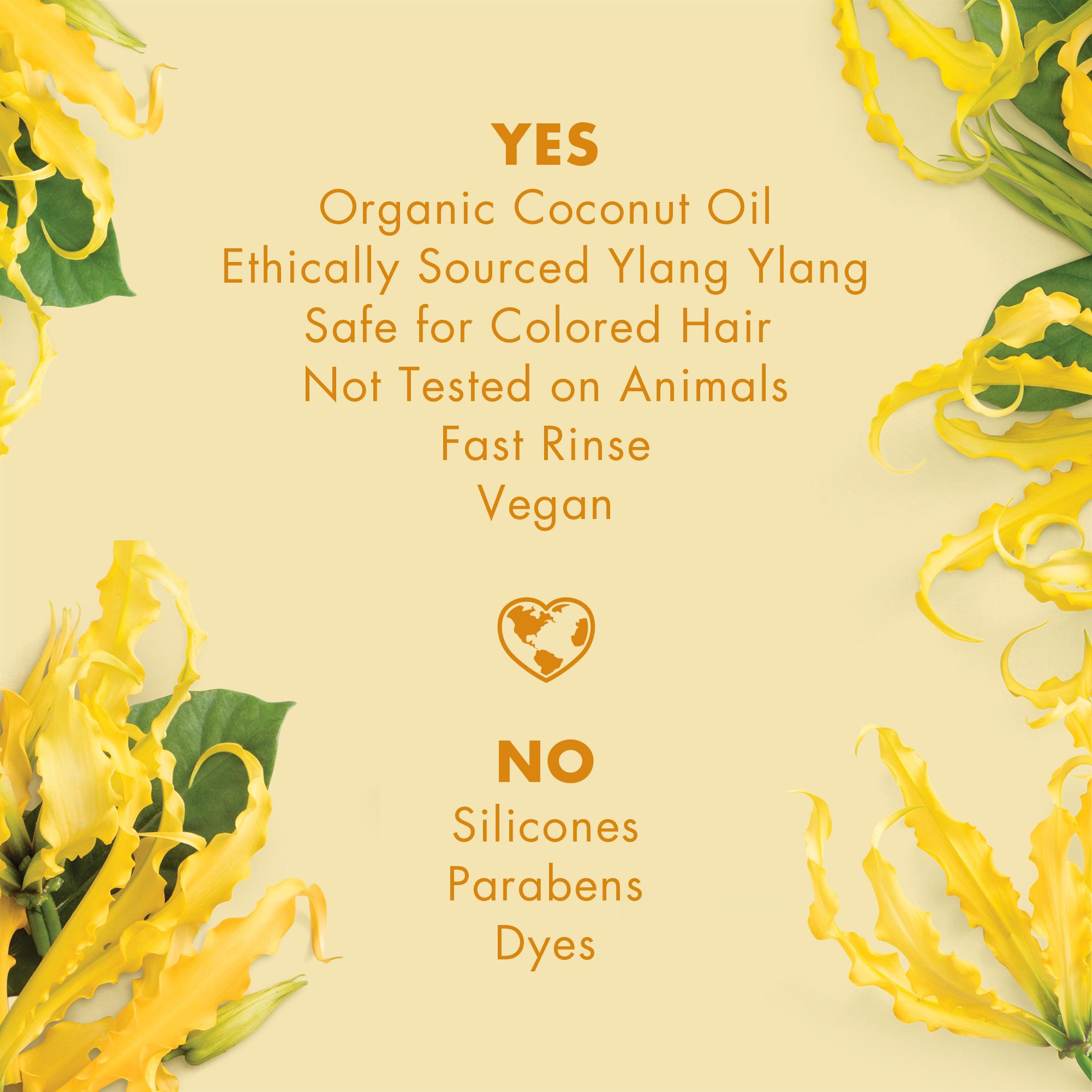 yes_no ylang OIL.jpg