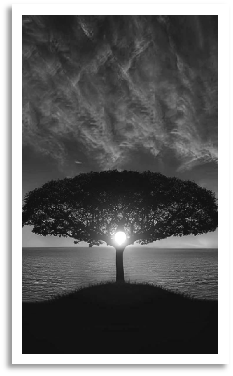 tree of life bw.png