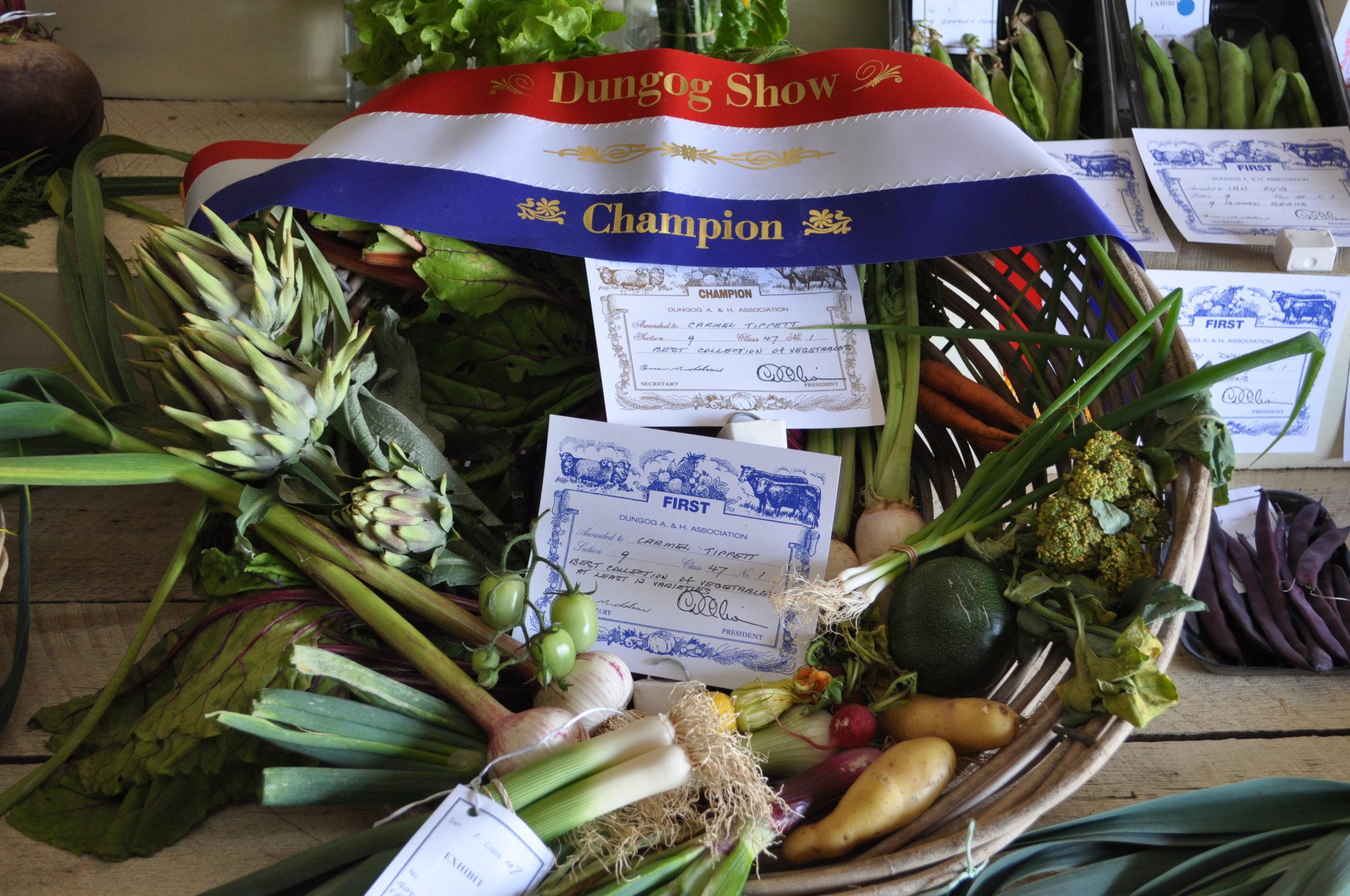 PAvilion - Show prize winning produce.JPG