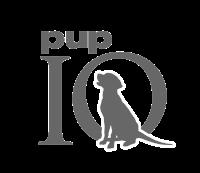 BR_PUPiQ_Logo_Final01.png