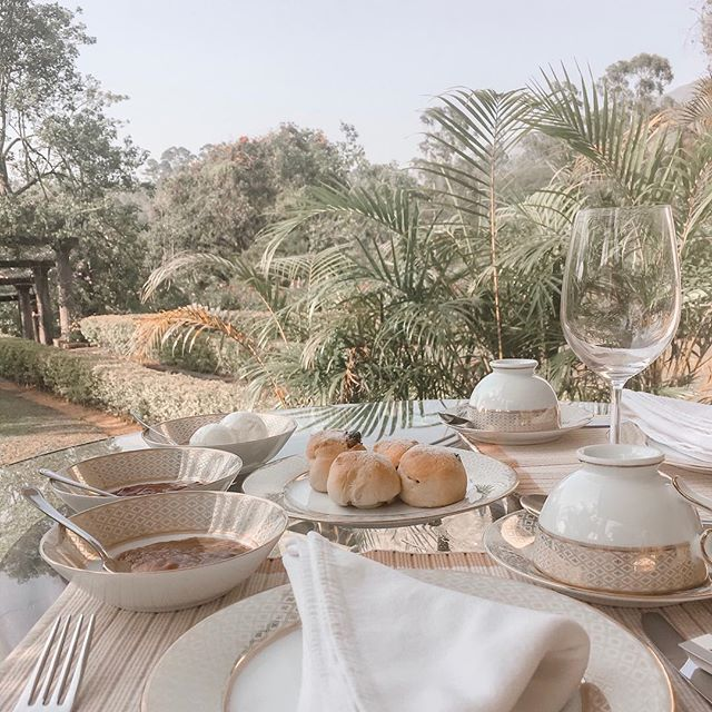 Reminiscing on January's past... in Sri Lanka with a few too many scones. ⠀ ⠀ #srilanka #teatrails #lotsofscones