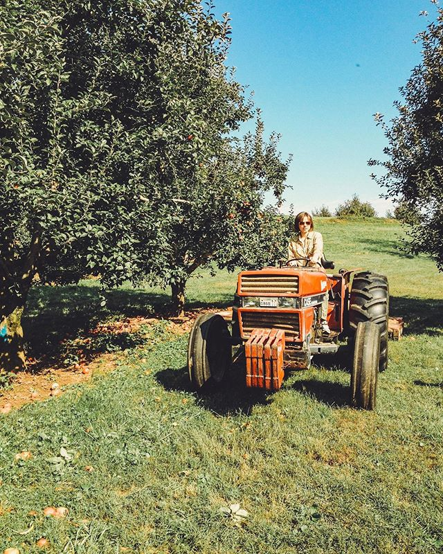 #tbt just gona leave it here ... 🚜 • • • #virginia #applepicking #throwbackthursday #icantotallydrivethisthing