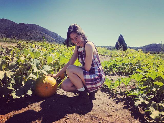 When you find that perfect pumpkin 🎃 • • • • #pumpkinpatch #pumpkin #pumpkins #pumkinpatch #countryside #explorecalifornia