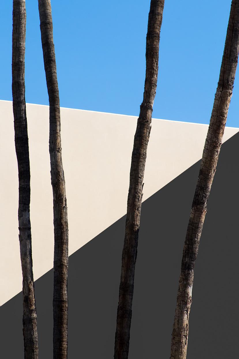 François Aubret | Palm 06