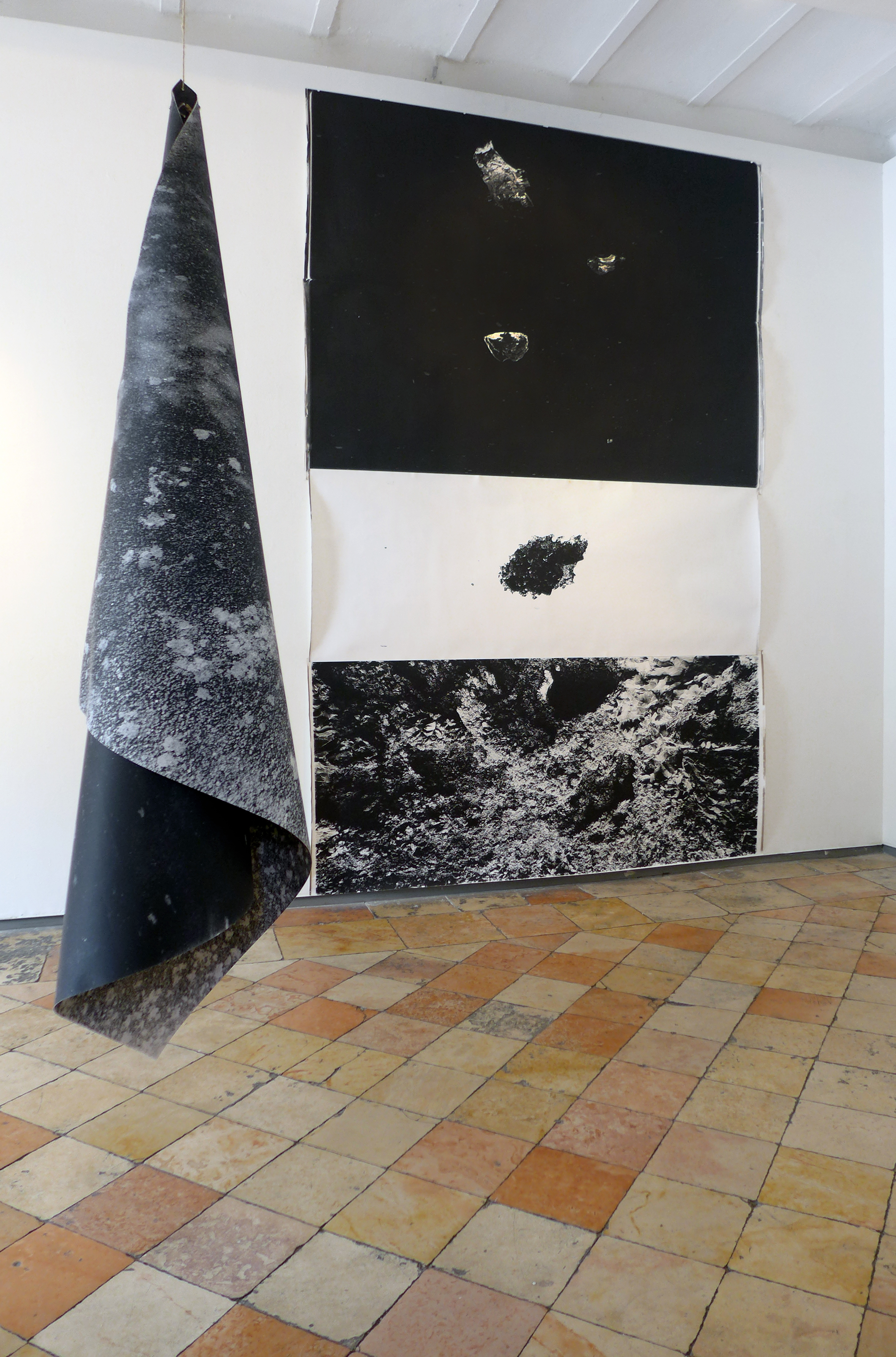Lior Gal, installation view