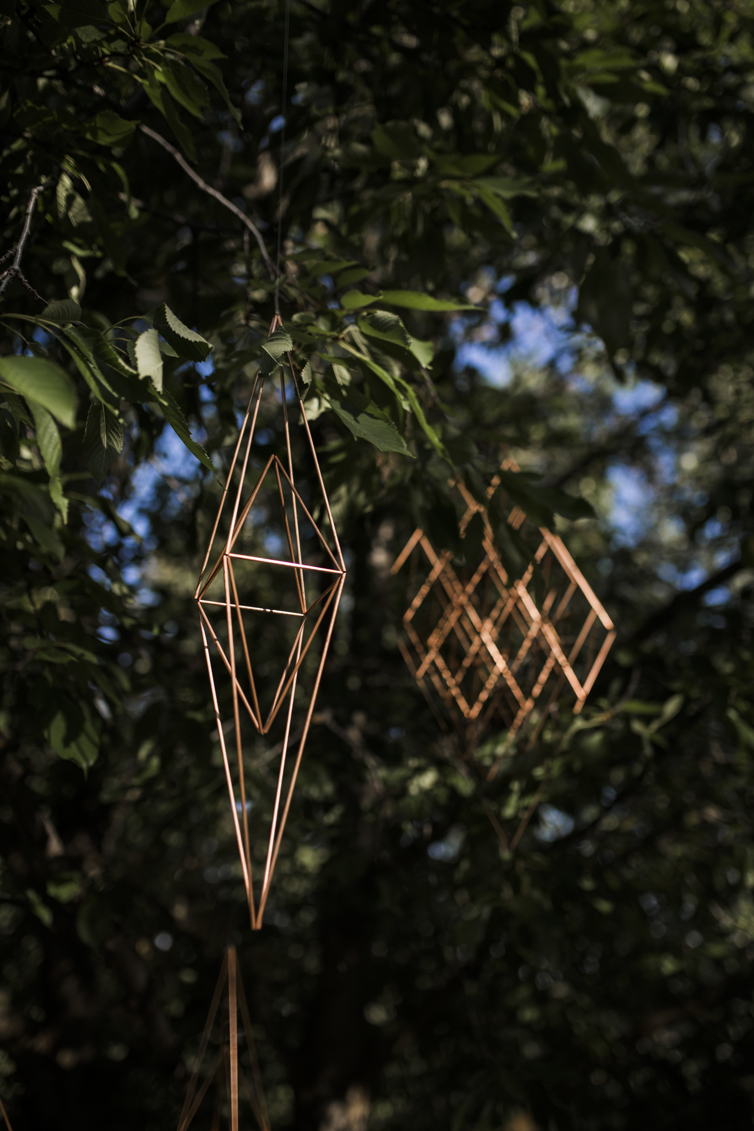 Tree top Shapes