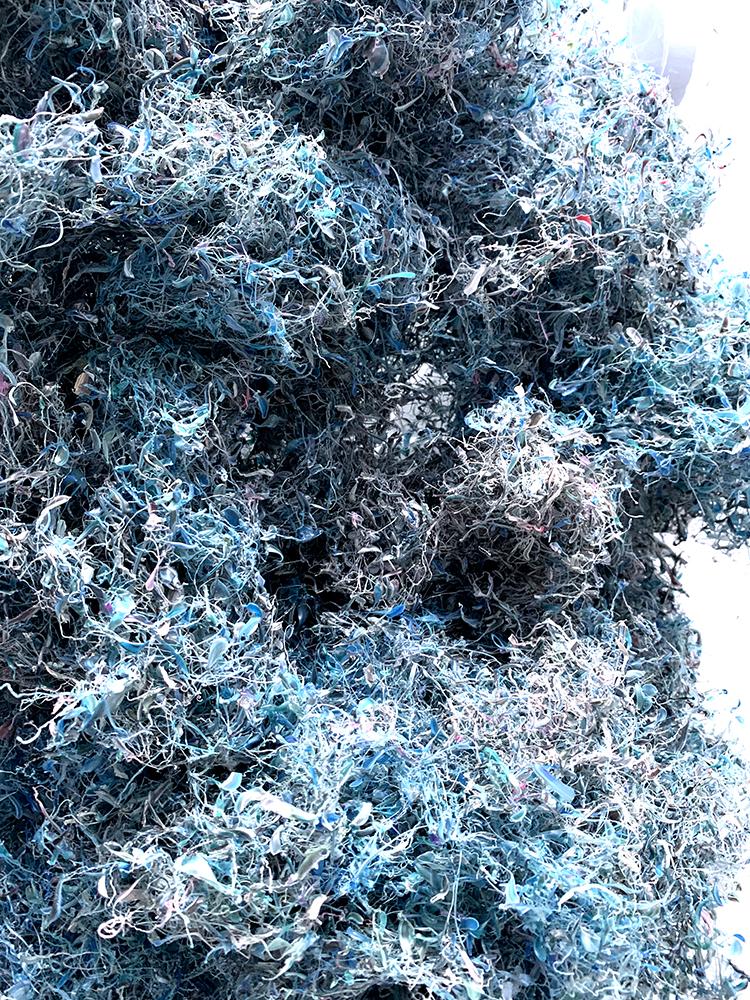 pétales-bleues.jpg