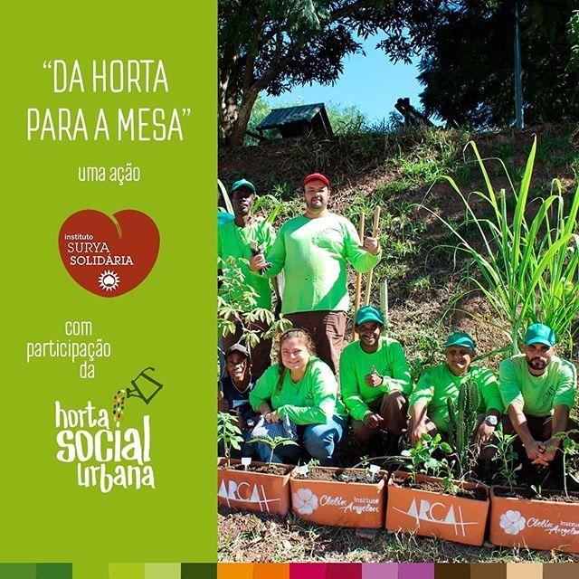 """O Instituto Clélia Angelon e o @suryasolidaria , em parceria com a @hortasocialurbana (HSU), realizaram na última segunda-feira (27/5) a ação """"Da Horta para a Mesa"""" e ampliaram a horta comunitária existente na Praça Jardim Raposo Tavares, região Oeste de São Paulo. O projeto nasceu após pedidos de moradores locais. Essa foi a primeira vez que os educandos da HSU, um projeto da @arcah , participaram de uma aula em uma horta comunitária."""