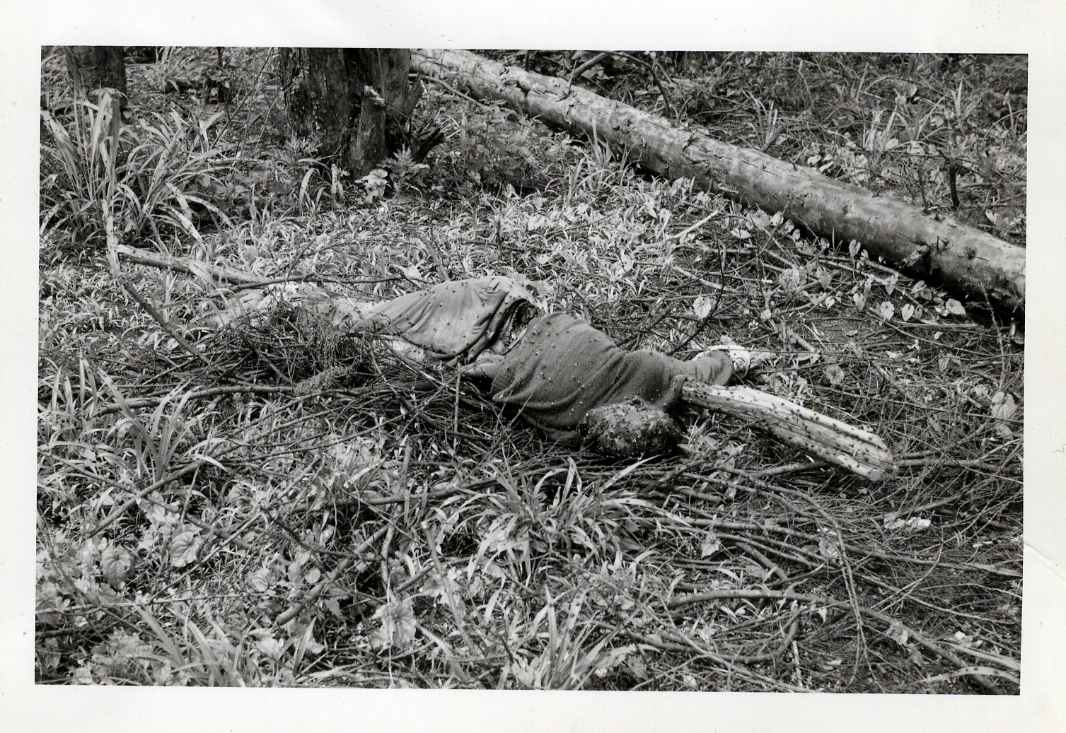 A killed Katangese, left in the terrain.