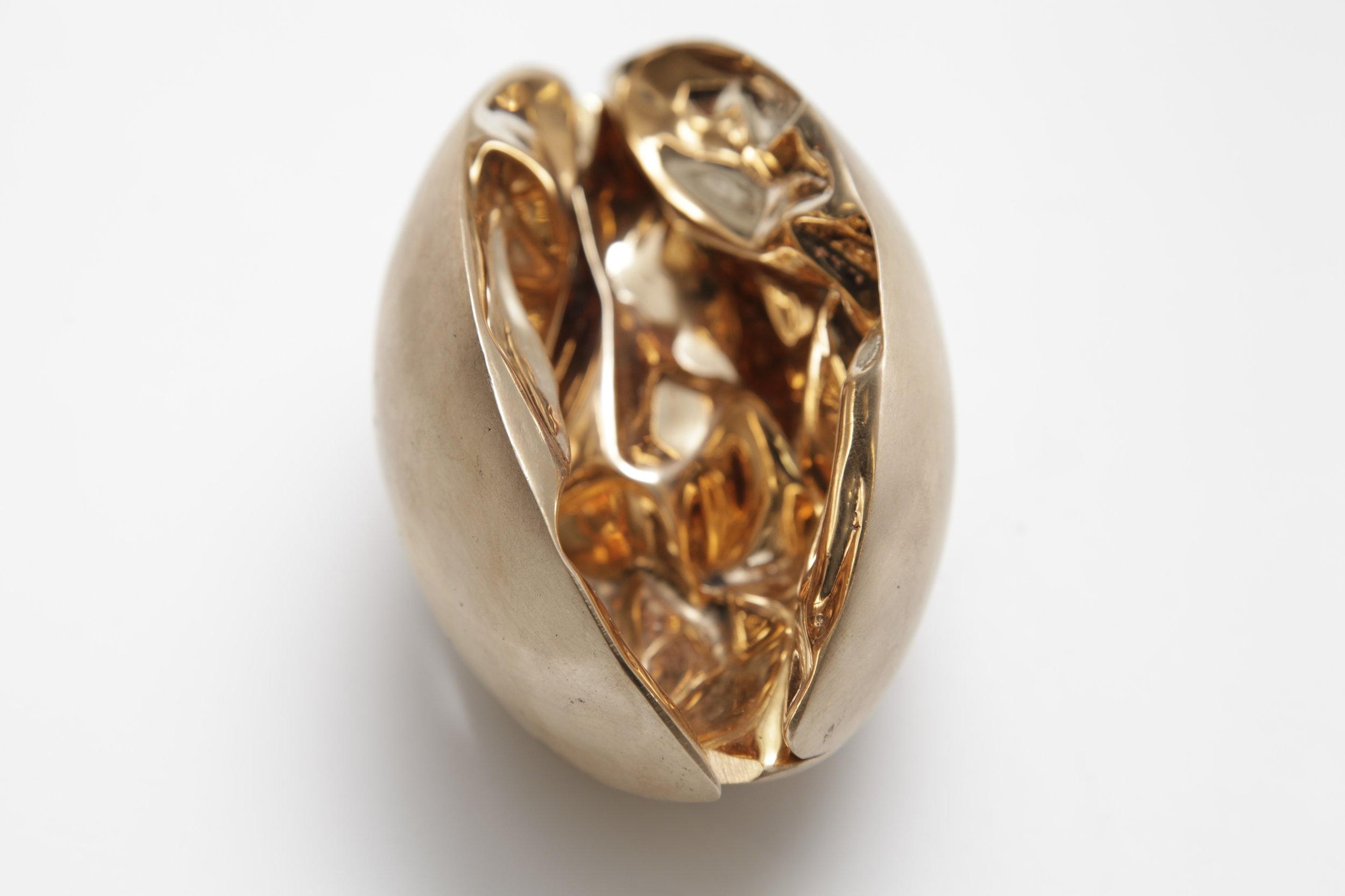 Lotus Shell (4).JPG