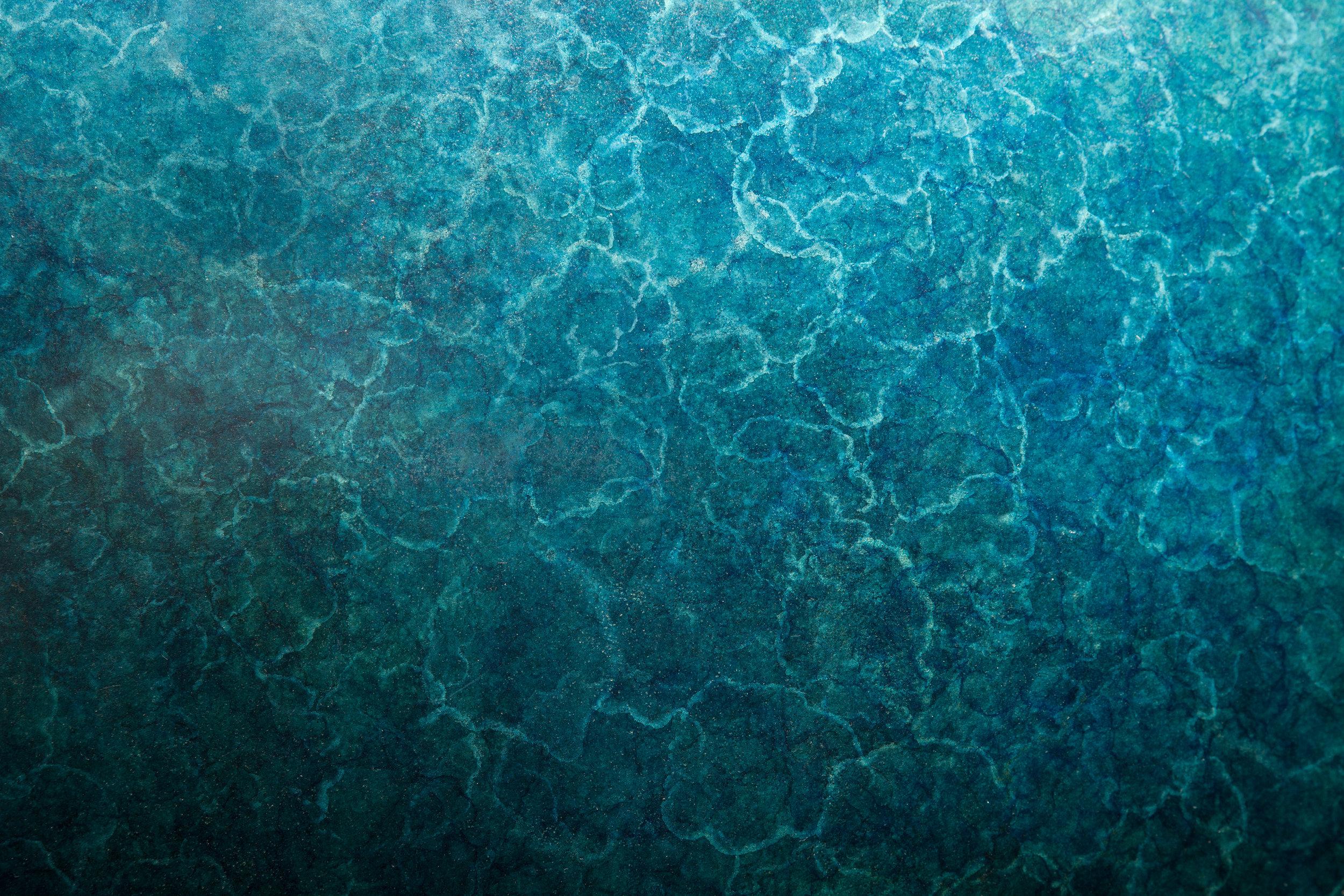 bu_90002_lotus_blue_D.jpg