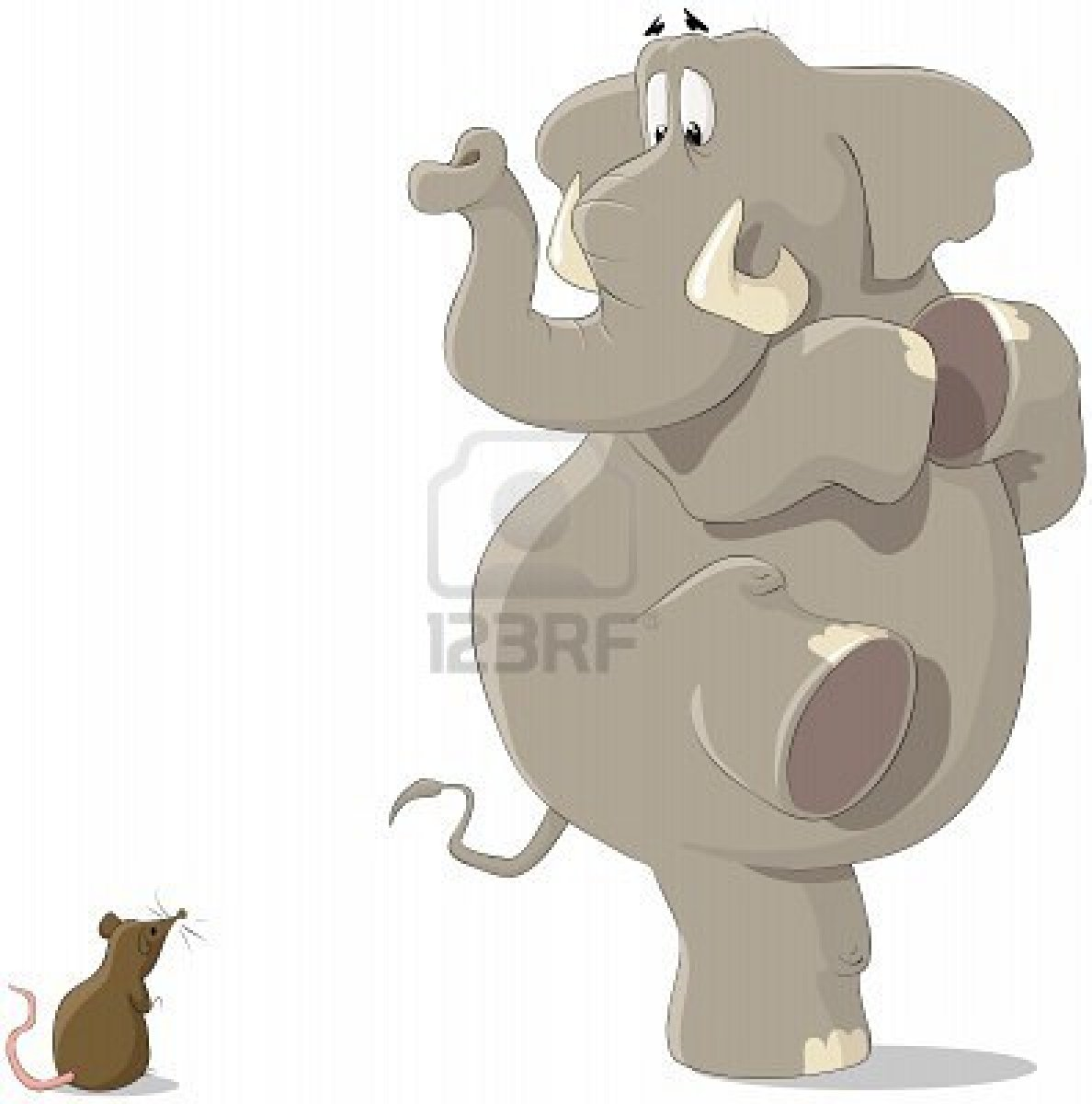7804940-the-elephant-was-frightened-of-a-small-mousy