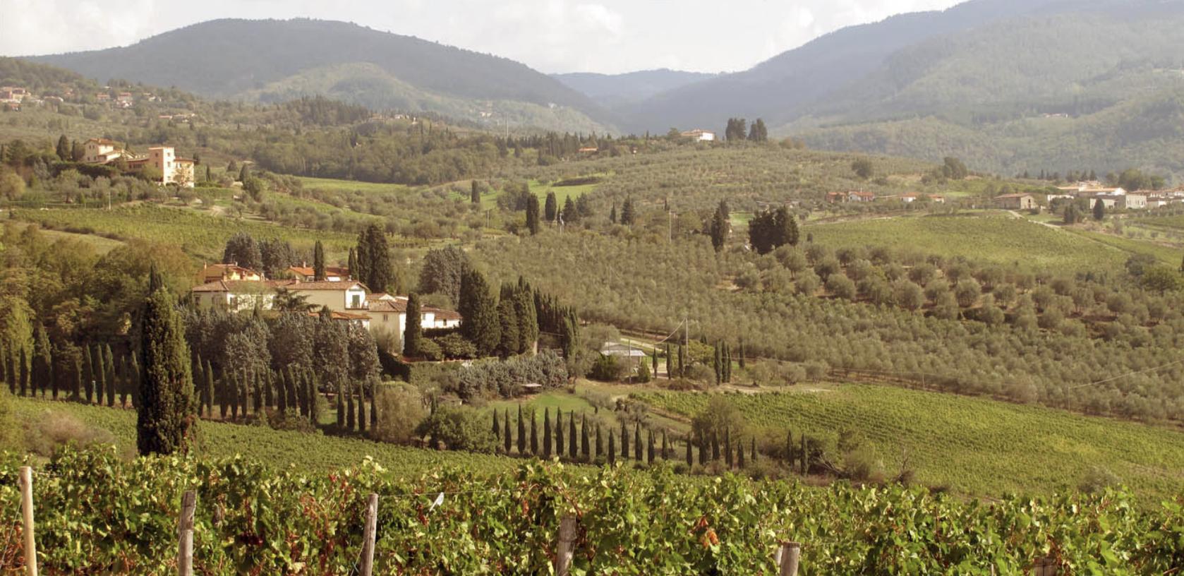 Travignoli Winery