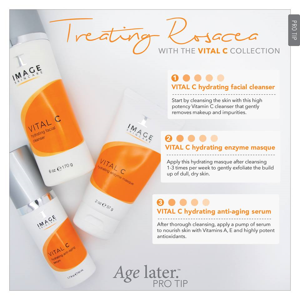 IMAGE Skincare - Another favorite Vitamin C product is Image Skincare's A.C.E Serum which is a combination of Vitamins A, C, and E. The entire Vital C Line is simply amazing and is great for all skin types and conditions, including aging, sensitive, dryness, rosacea, hyperpigmented and acne skin. Look out for our subsequent blog, specifically, on Image Skincare. We will endeavor to provide you with a breakdown of all Vital C's counterparts. We also plan to do a giveaway of a trial kit of The Vital C Collection so stay tuned!