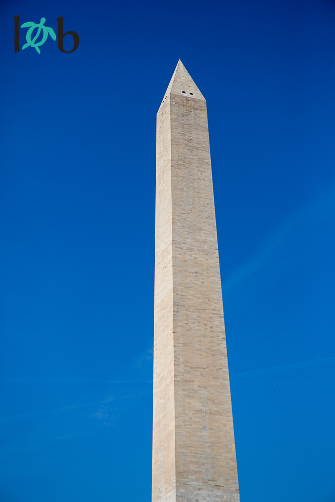 View of Washington Monument, Washington, DC