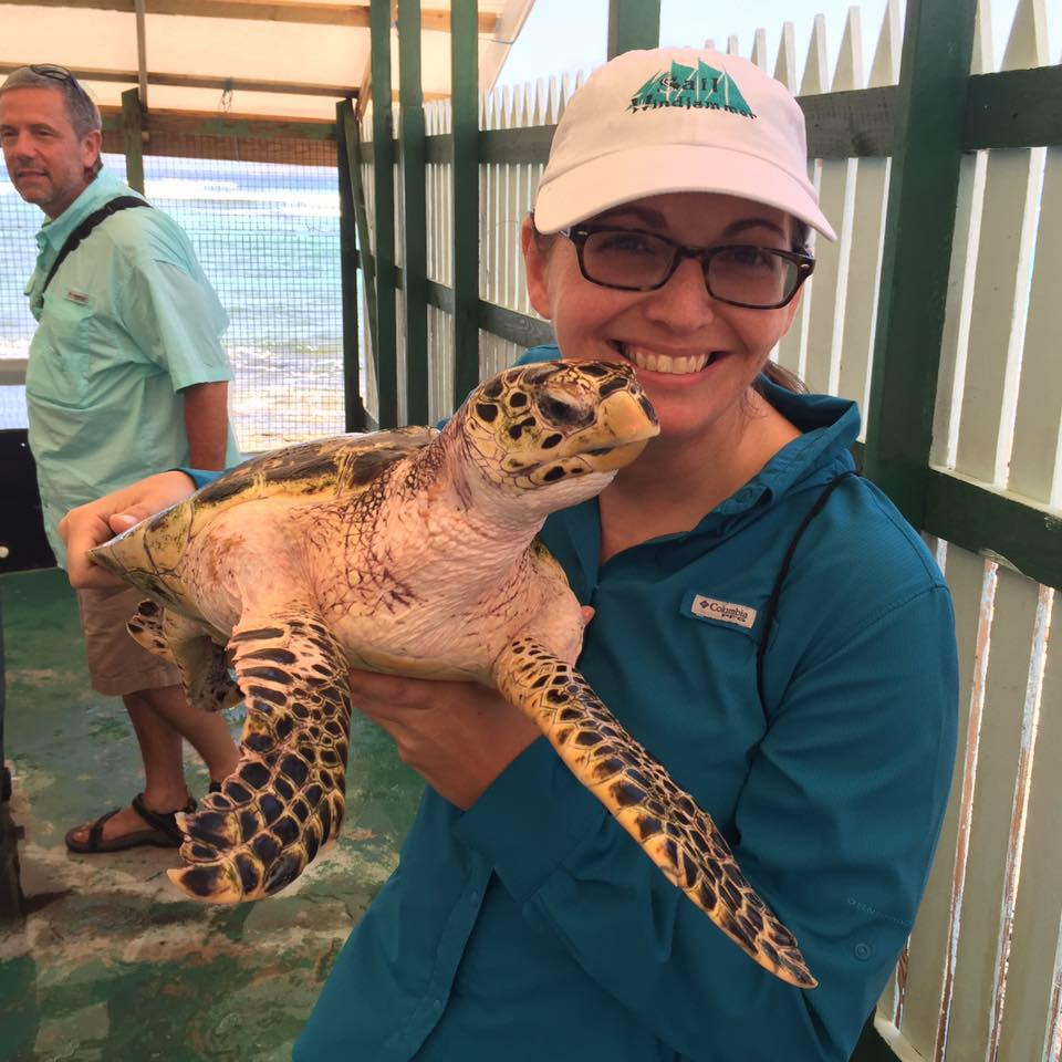 Learning about Sea Turtles at Bequia's Old Hegg Turtle Sanctuary