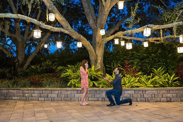 """Is this really happening right now?"" Kelsey and Nick had literally just flown in from New York to start their Disney vacation and needless to say, she was not expecting it to be this magical! Congrats you two! 💍 #shesaidyes #imgettingmarried #proposal #engagementring #shotbylori #lovestoryteller #orlandoweddingphotographer #2020bride #imengaged #destinationweddingphotographer #engaged #theknot #storyteller #orlandoweddingphotography #loveauthentic #floridawedding #orlando #orlandoproposalphotographer #proposalphotos #bluehour"