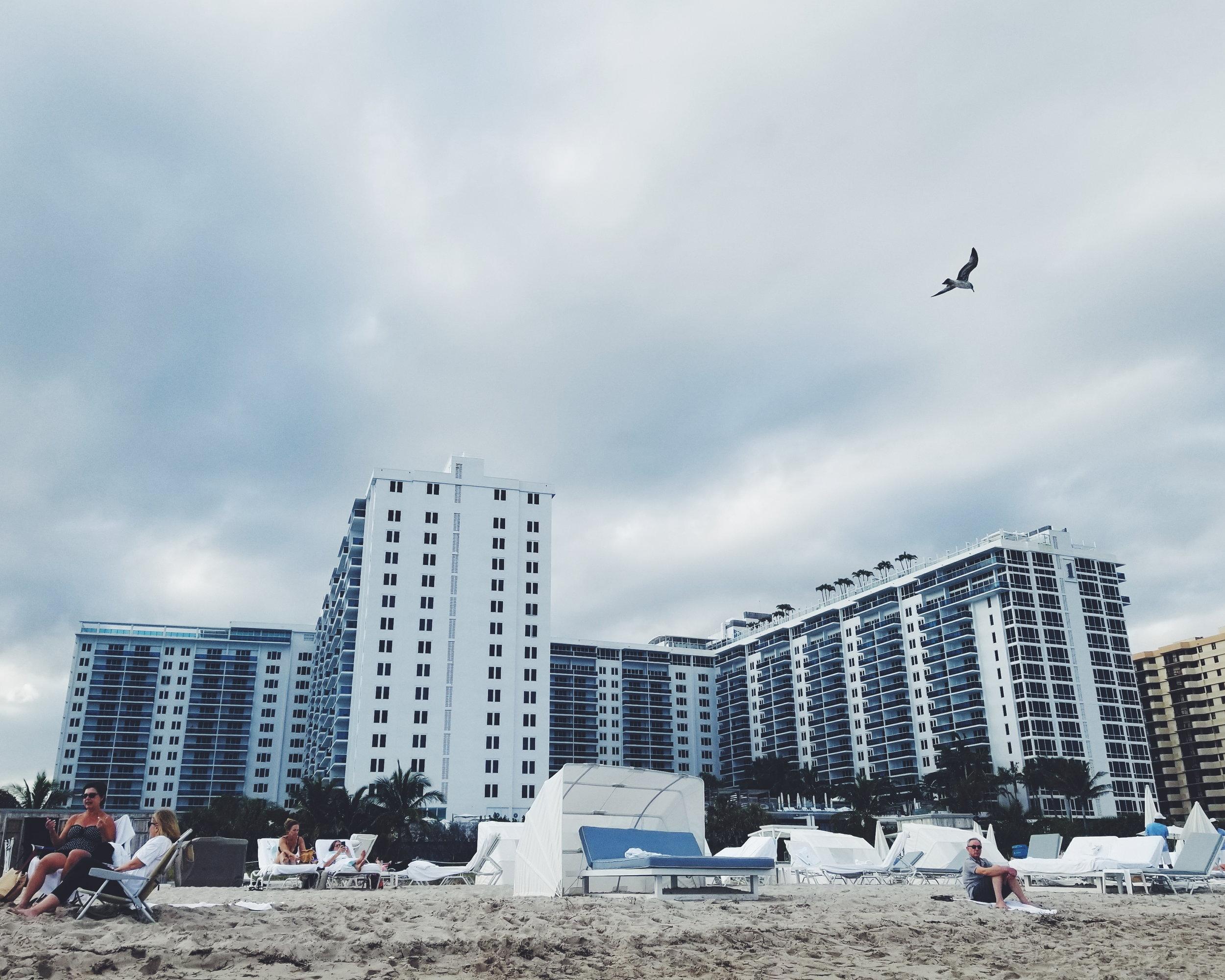 1 Hotel - South Beach Miami