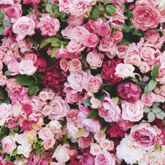 Natalie-Portman-Dior-Flower-Wall.jpg
