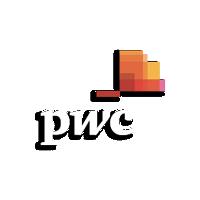 PwC Logo - Footer 2.png