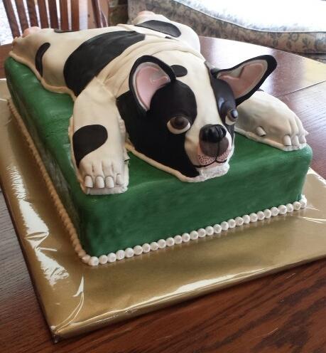 Boston Terrier Dog Cake - by Carolyn Rodriguez