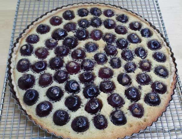 Berry Tart - by Carolyn Rodriguez