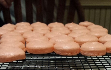 French Macarons cooling! - by Carolyn Rodriguez