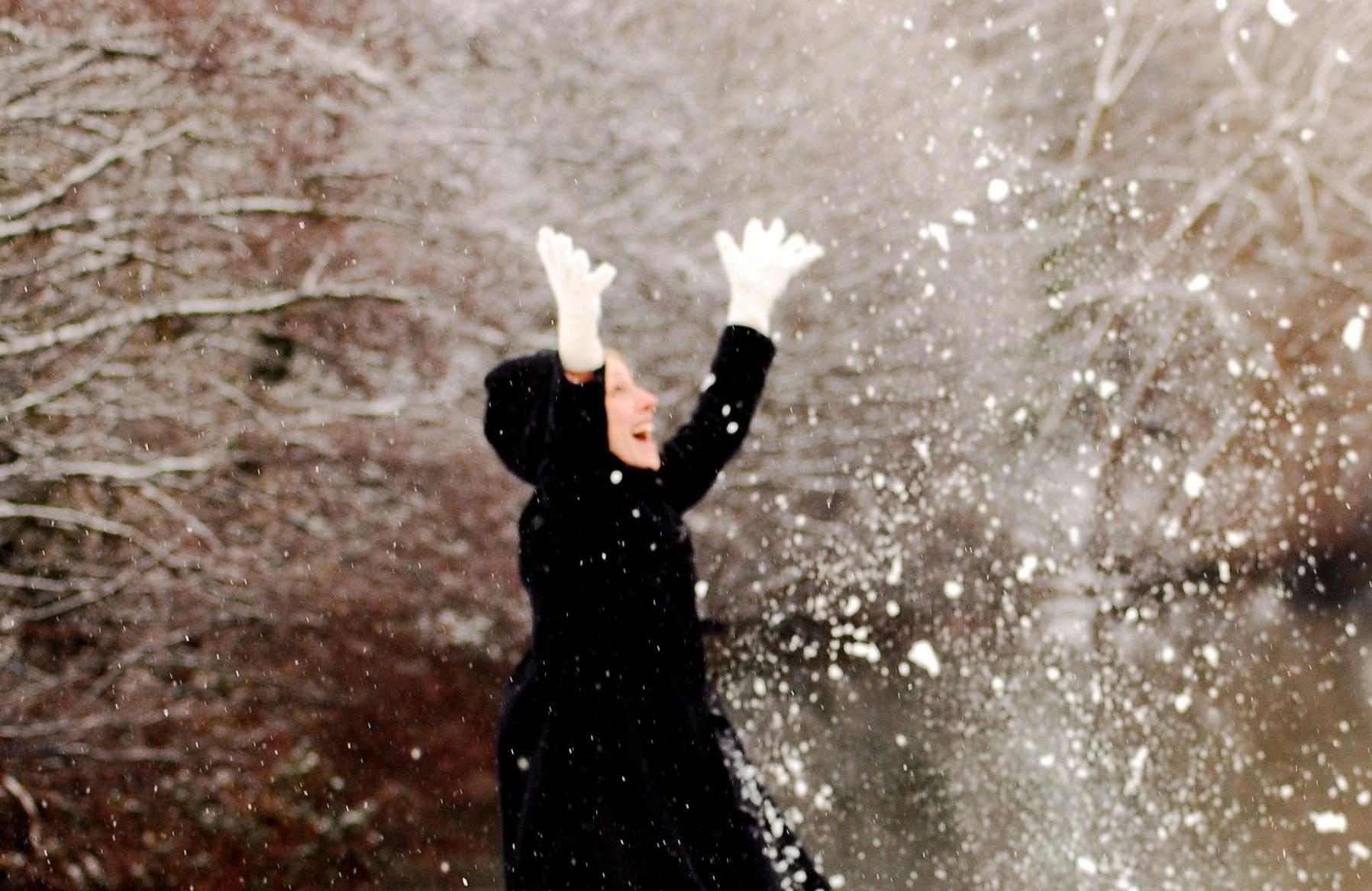 snow+jan+2010+108.jpg