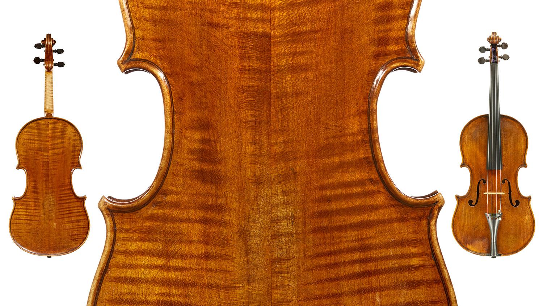 viola5.jpg